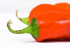 Free Red Hot Jalapeno Pepper Royalty Free Stock Photo - 3015225