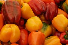 Free Red And Yellow Peppers Royalty Free Stock Photos - 3016618