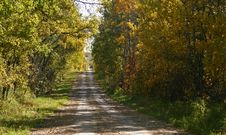 Free Country Road Royalty Free Stock Image - 3017746