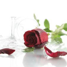 Free Red Rose And Broken Glass Royalty Free Stock Images - 30103139