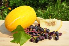 Free Melon And Grapes. Stock Images - 30105434