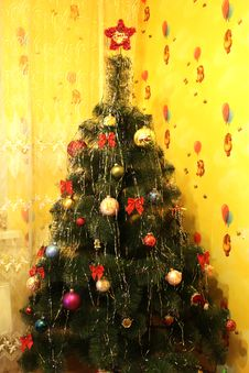 Free Harmonous And Dressed Up New Year S Fur-tree Royalty Free Stock Photo - 30106095