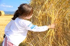 Free Small Rural Girl On Harvest Field Stock Photo - 30110210