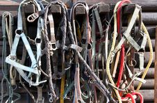 Details Of Diversity Used Horse Reins Royalty Free Stock Photos
