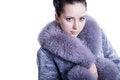 Free Beautiful Woman In Bluish Winter Fur Coat Stock Image - 30121421