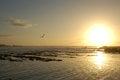 Free Sunset By Essaouira Royalty Free Stock Photo - 30123375