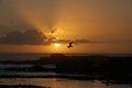 Free Sunset By Essaouira Royalty Free Stock Image - 30123406