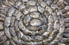 Free Dry Fishes - Artistic Shape At Food Market Royalty Free Stock Photos - 30120528