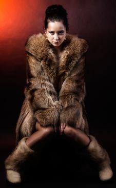 Free Woman In Luxury Winter Fur Coat Stock Photo - 30121250