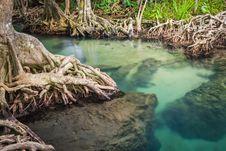 Free Klong Song Nam Pier, Krabi, Thailand Royalty Free Stock Image - 30121466