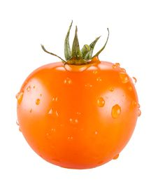 Free Fresh Tomatoes Royalty Free Stock Photography - 30124107
