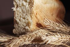 Free Bread And Wheat Ears Royalty Free Stock Photos - 30133358