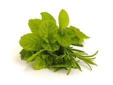 Free Herbs Royalty Free Stock Photos - 30136278