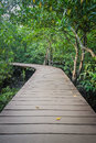 Free Wooden Walk Way Among The Forest Royalty Free Stock Image - 30140866