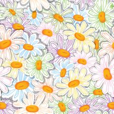 Free Camomile Seamless Pattern Stock Photography - 30144102