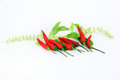 Free The Red Peppers Be Spicy. Royalty Free Stock Photography - 30167517