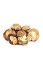 Free The Shiitake Mushrooms. Stock Photo - 30168140