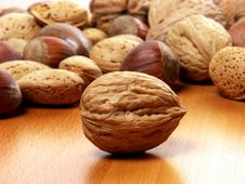 Free Nuts Royalty Free Stock Image - 30160586