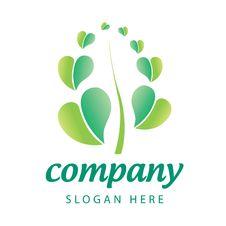 Free Leaf Logo Stock Photography - 30163652