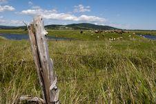 Free Farming Scenic Stock Photo - 30164150