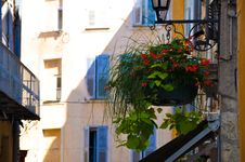 Free Street With Flowers Stock Photo - 30173850