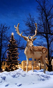 Free Christmas Deer In Small Town Stock Photography - 30181542