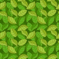 Free Seamless Pattern With Green Leaves Stock Image - 30182121