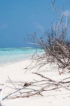 Free Maldives Stock Image - 30189431