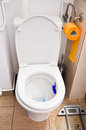 Free Toilet Royalty Free Stock Images - 30197189