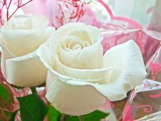 Free Bouquet Of White Roses Closeup Stock Photography - 30190022
