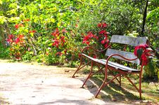 Free Bench In Park Royalty Free Stock Images - 30191709