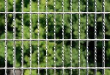 Free Metal Grid On Green Background Royalty Free Stock Images - 3021269