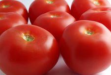 Free Tomatoes Background Stock Photo - 3022230