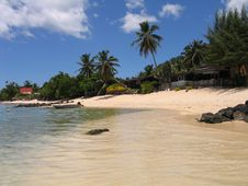 Free Beach On Moorea Island Royalty Free Stock Photography - 3024277