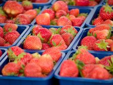 Free Strawberries Royalty Free Stock Image - 3025246
