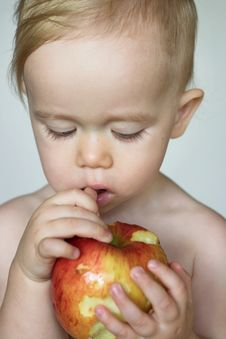 Free Toddler Eating Apple Royalty Free Stock Photography - 3025977
