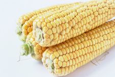 Free Corn Royalty Free Stock Photography - 3026577