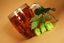 Free Glass Beer And Hop Royalty Free Stock Photography - 3027197