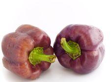 Free Violet Pepper Bells Royalty Free Stock Images - 3027319