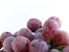 Free Grape Bunch Stock Photography - 3027372