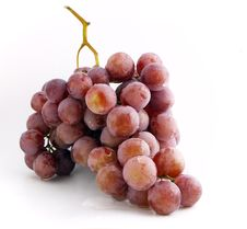 Free Grape Bunch Royalty Free Stock Photography - 3027507
