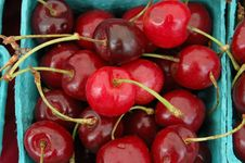 Free Cherries Royalty Free Stock Photo - 3027575