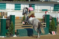 Free Horse Jump Royalty Free Stock Images - 3027619