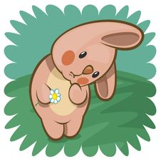 Bashful Bunny With Flower Stock Images