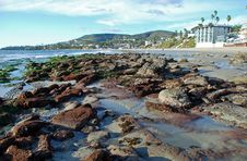 Low Tide At Laguna Beach, California Stock Photography