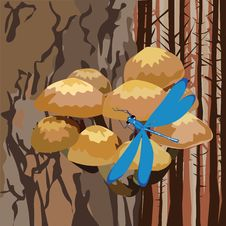 Free Landscape With Mushrooms On A Tree Stock Photography - 30215532