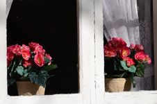 Free Background Old House With Windows And Flowers Royalty Free Stock Photos - 30216548