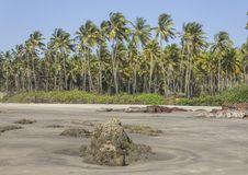 Free Ashvem Beach Goa Royalty Free Stock Photo - 30223715