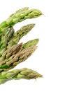 Free Asparagus Stock Photos - 30231863