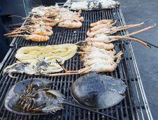 Free Seafood Stock Photos - 30231443